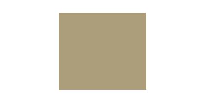The Digital Embassy partner logo
