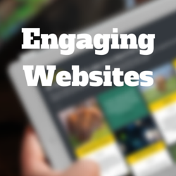 Webinar Q&A on Building Engaging Websites