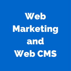 Talking Web Marketing and Web CMS: An Interview with Brett Cornell