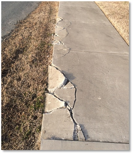 cracks in the sidewalk
