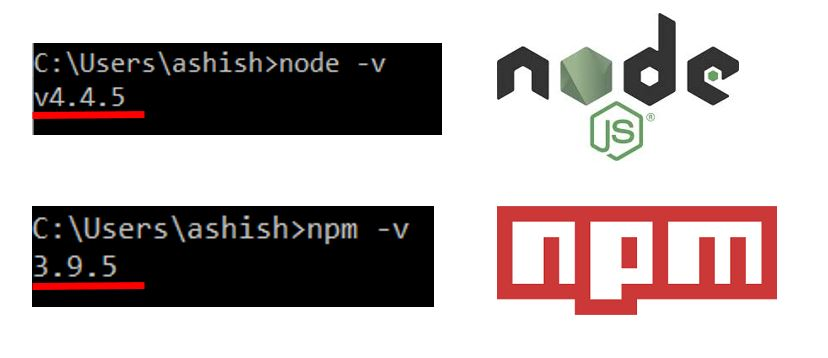 Node and NPM Versions