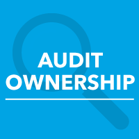 who owns the content audit?