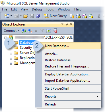 In the Object Explorer panel, right-click Databases, choose New Database.